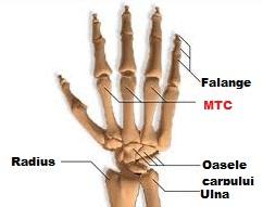 durere articulară a primei falange a degetului arătător