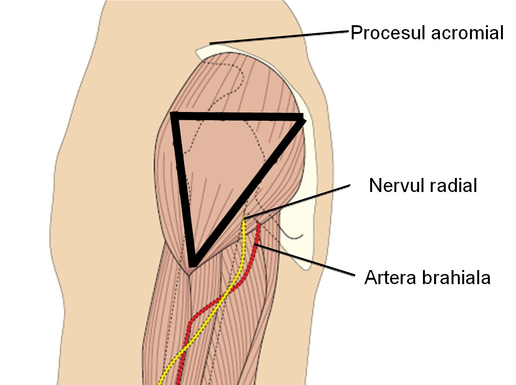 injecții pentru durere în articulațiile cotului ruperea meniscului genunchiului