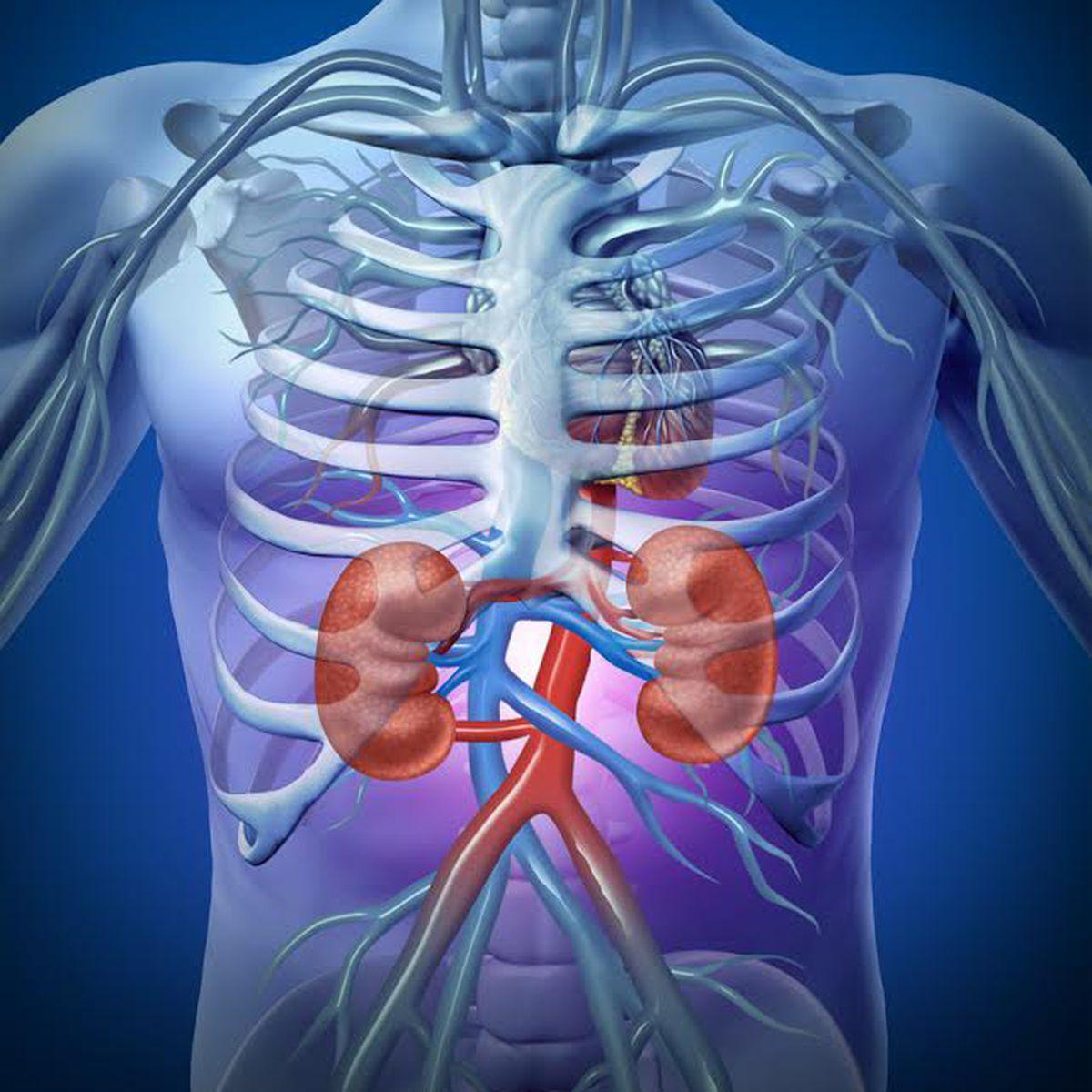 articulațiile rănite într-un rinichi simptomele și tratamentul bolii de șold