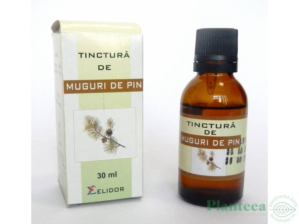 Tinctură de nuci de pin pentru tratamentul articulațiilor. Reduceti durerile articulare cu plante!