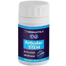 refacerea țesuturilor articulare și cartilaginoase