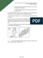 Tratamentul articulațiilor genunchiului cu frunze de arțar