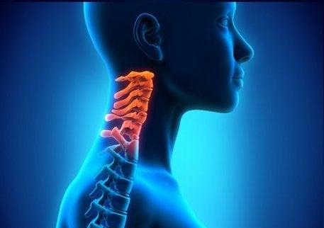 cel mai bun remediu pentru osteochondroza cervicală artroză sau medicamente pentru coxartroză pentru tratament
