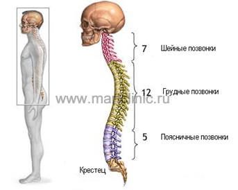 tratamentul osteocondrozei lombare