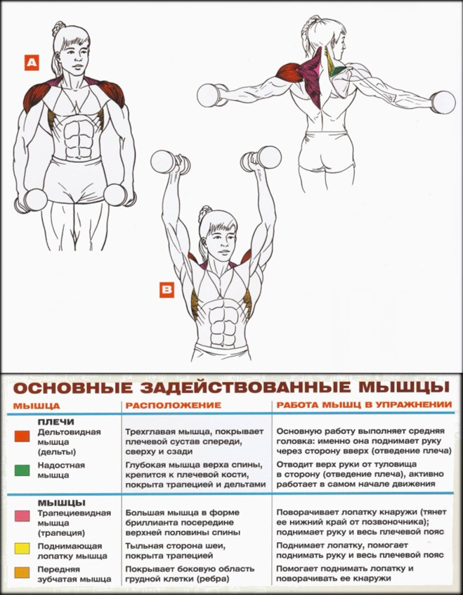 deteriorarea mușchiului supraspinat al tratamentului articulațiilor umărului