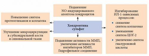 Preparate condoprotectoare pentru evaluarea prețurilor la articulații deformarea tratamentului artrozei pe degete