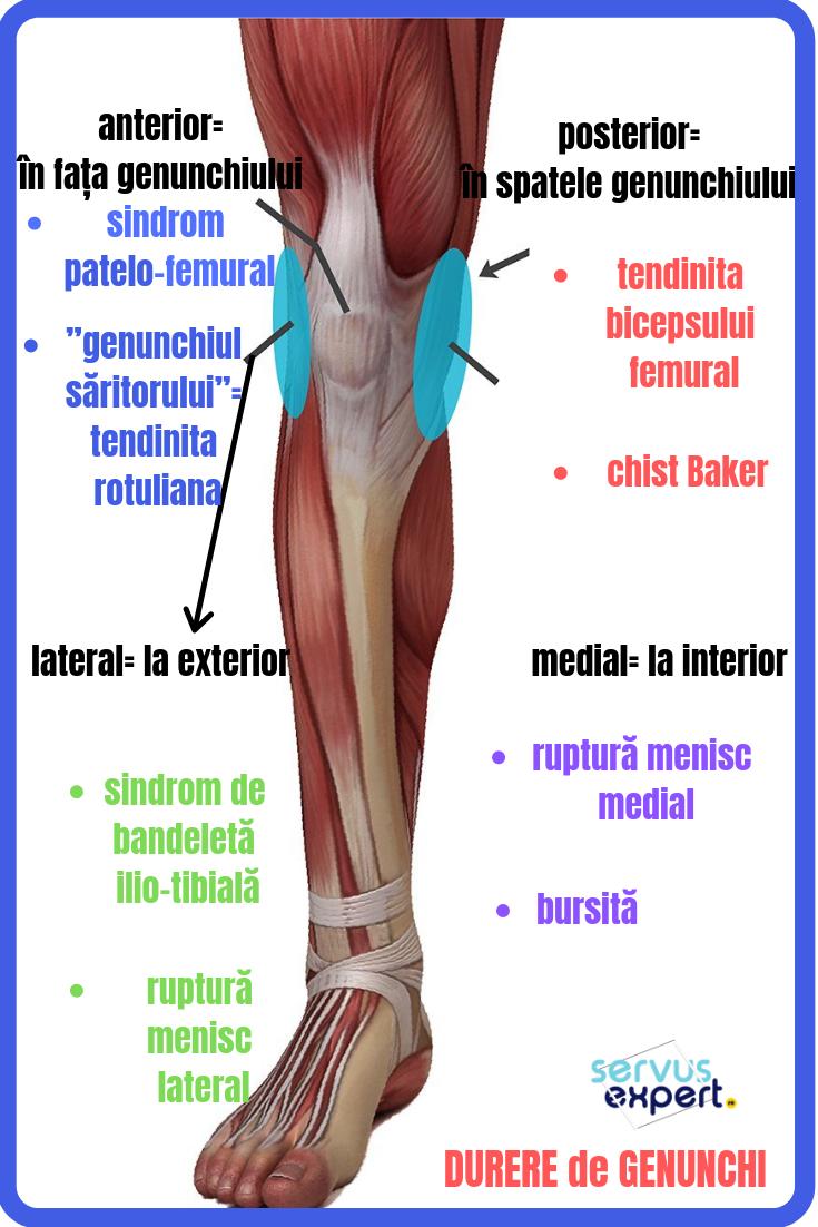 durere laterală la genunchi