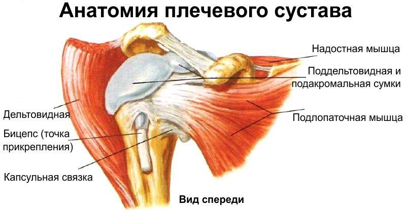 Daune bancare la articulația umărului