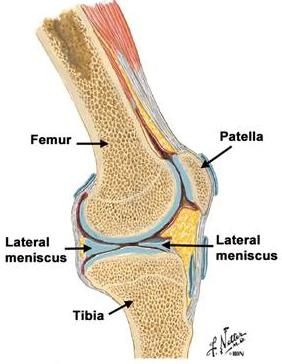 diagnostice de leziuni la genunchi artrita posttraumatică a degetului de la picior