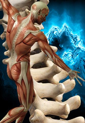 ce medicamente să luați cu artroza umărului semne ale artrozei cotului