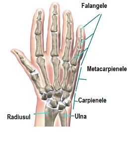 denivelări apoase rănesc articulațiile tratamentul articulațiilor genunchiului și șoldului