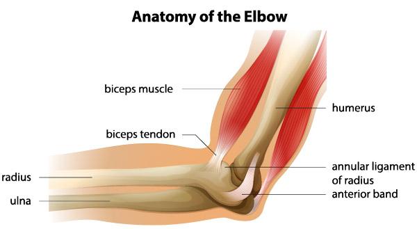 Leziunile ligamentului colateral ulnar