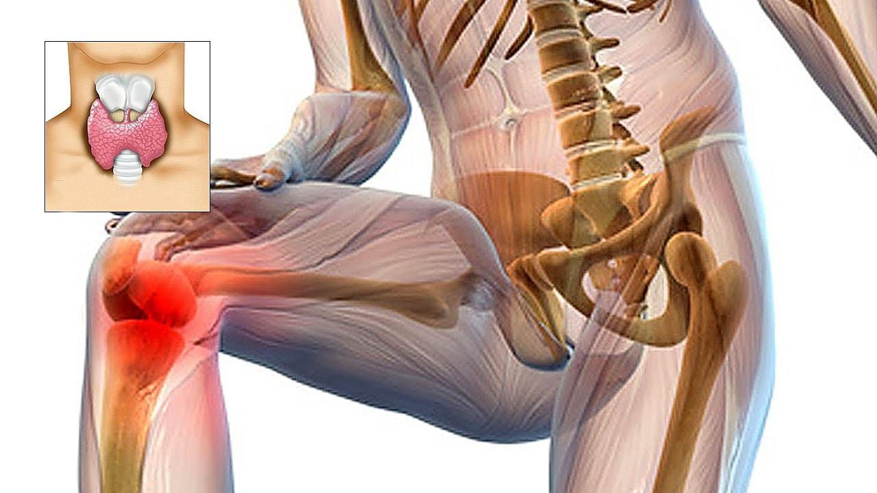 durere în mușchi și articulații