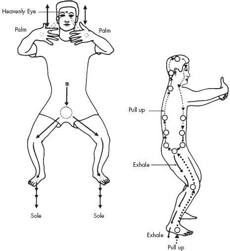 dureri articulare qigong