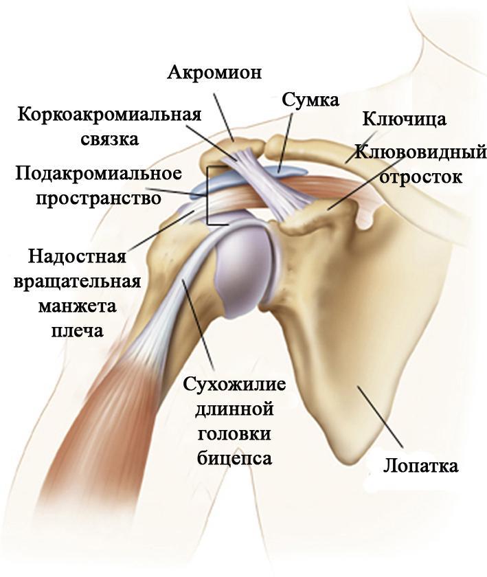 как лечить воспаление связок плечевого сустава