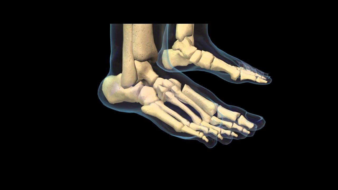 Tratament articular micromotion, Exercițiu pentru boala artrozei sacrale