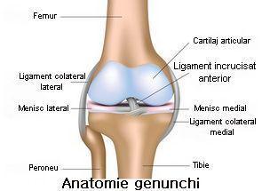 leziuni la nivelul genunchiului cum să trateze