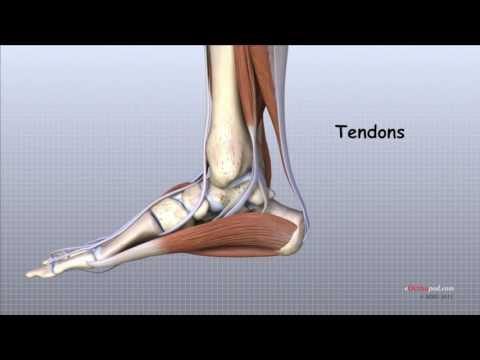 Ruperea sindrozei tratamentul articulației gleznei, Deteriorarea sindrozei articulației gleznei