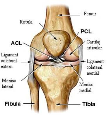 Piciorul umflat, articulație de șold. Recomandari pentru pacientii cu proteza totala de sold