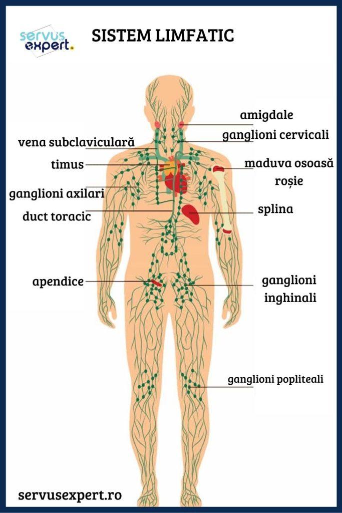 ganglionii limfatici și vederea